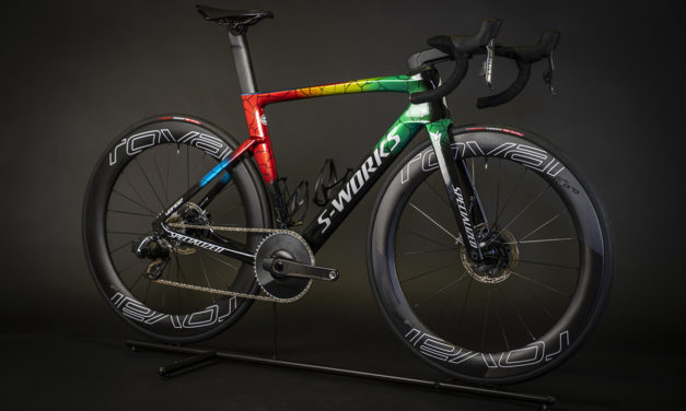 SPECIALIZED | Le S-Works Venge Champion du Monde ITU 2019 de Vincent Luis