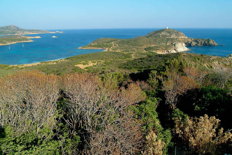 Nouveau triathlon pour tous en Sardaigne  !